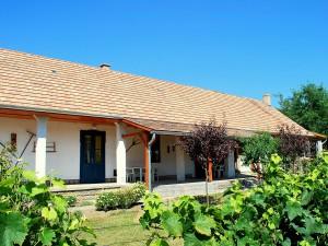Vakantiehuis Hongarije Kisszékely