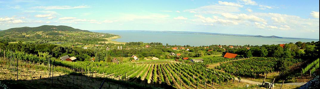 regio balatonmeer hongarije 01