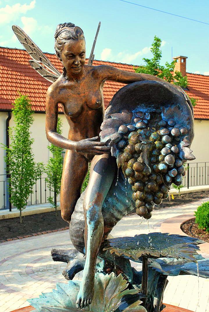 tokaj wijngebied hongarije 04