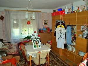 Het Andi Ház in Sály kopen